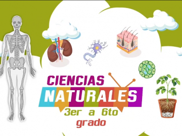 Ciencias Naturales 3er a 6to grado